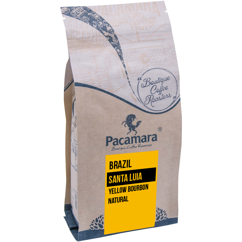 Brazil Santa Lucia Yellow Bourbon Natural