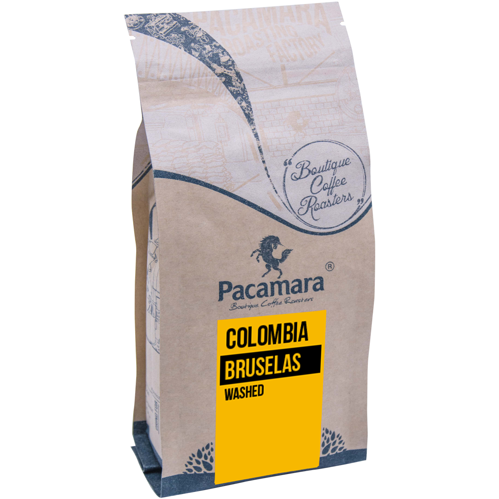 Colombia Bruselas Washed