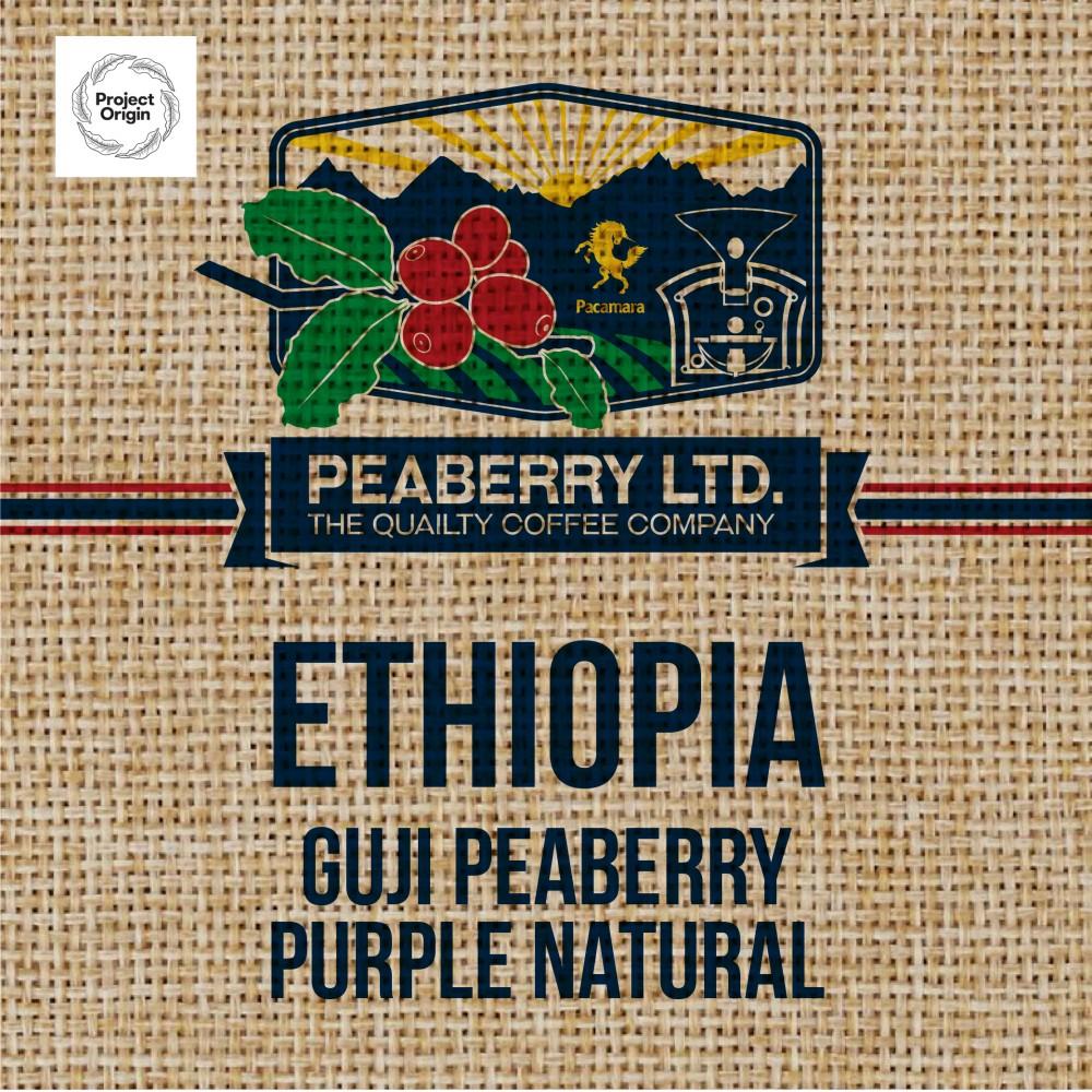 Green Bean Ethiopia Guji Peaberry PURPLE Natura