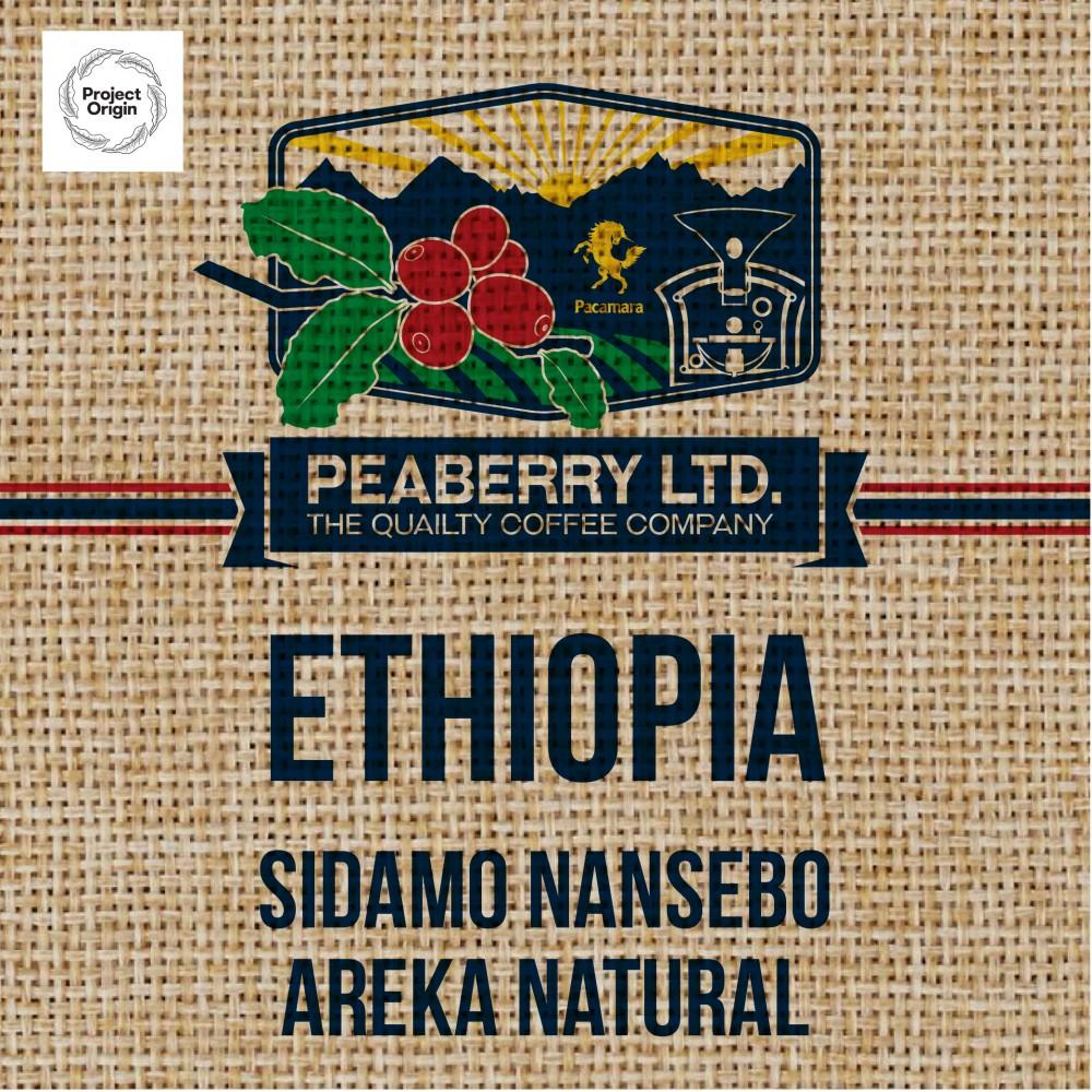 Green Bean Ethiopia Sidamo Nansebo AREKA Natural