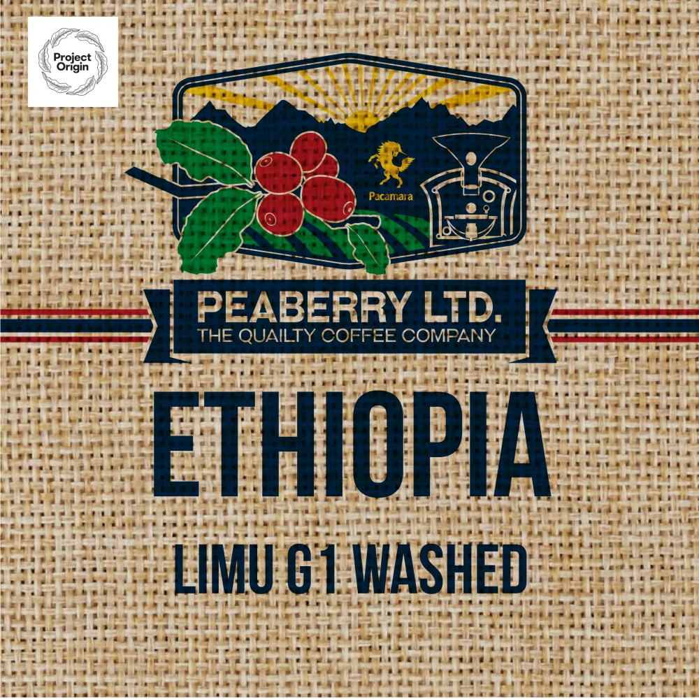 Green Bean Ethiopia Limu G1 Washed