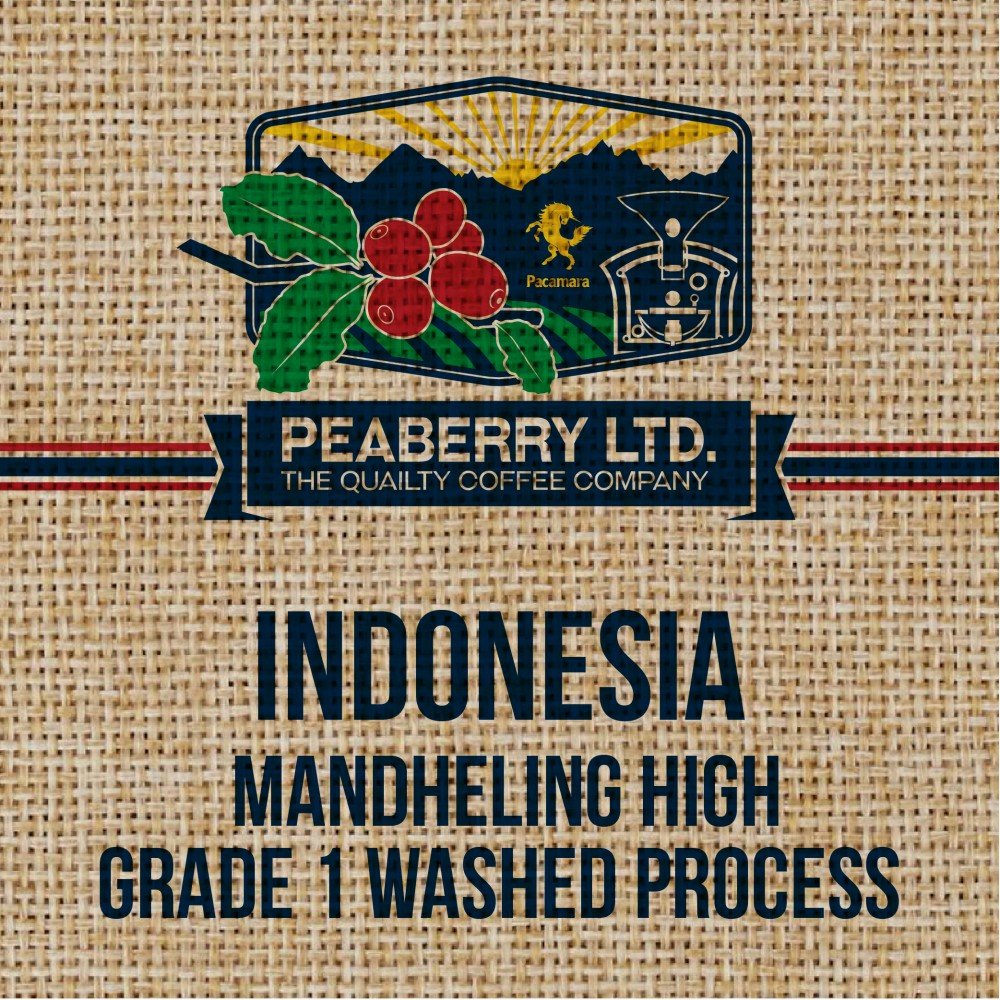 Green Bean Indonesia Mandheling High Grade 1 washed process