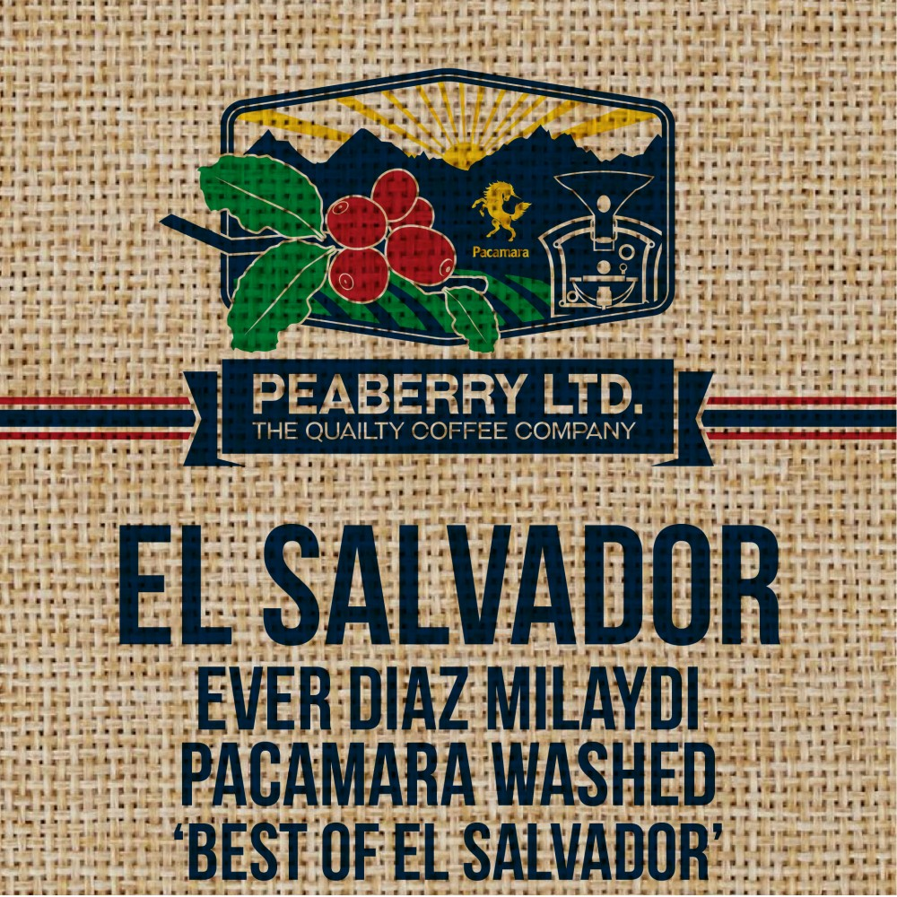 Green Bean EL Salvador Ever Diaz Milaydi Pacamara Washed
