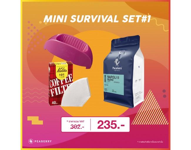 Mini Survival Set 1