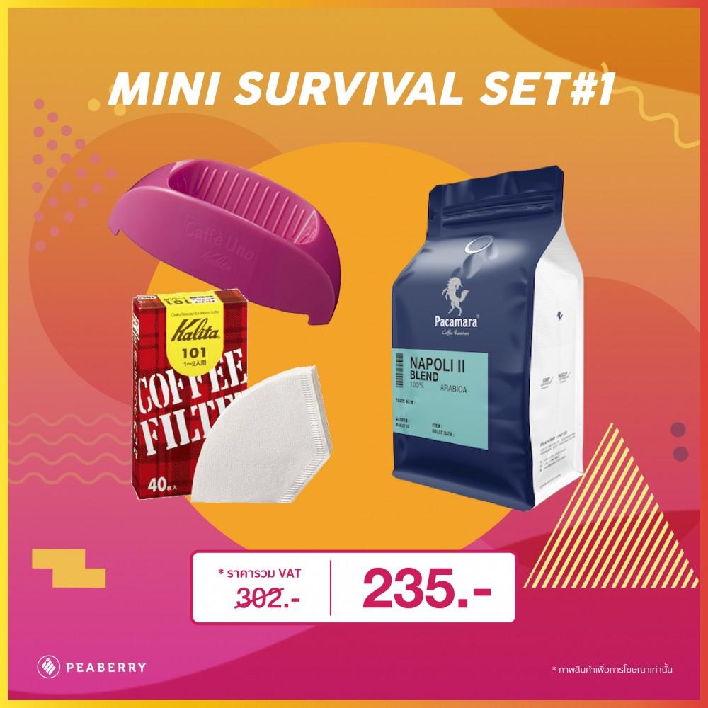 Mini Survival Set #1